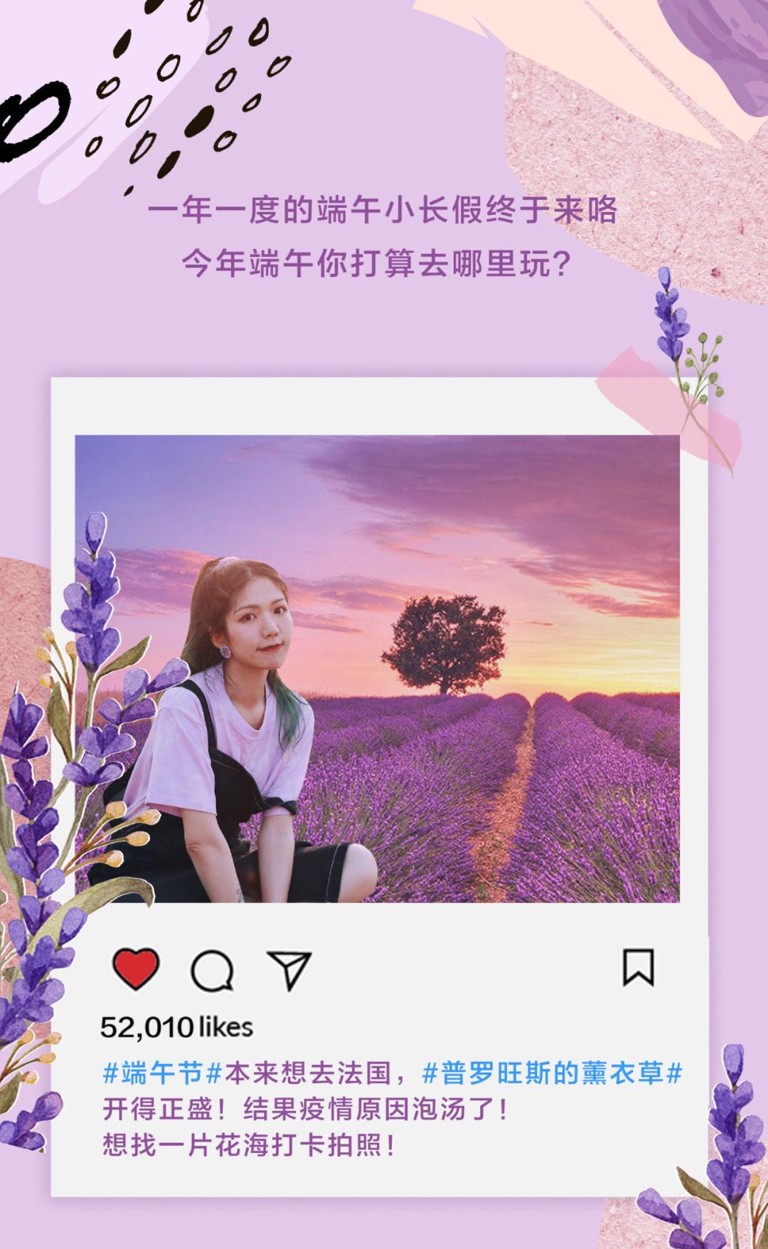 杭州の小普罗旺斯,隐藏在市区里的2000㎡超大紫色花海!小长假必去的打卡圣地!(图2)